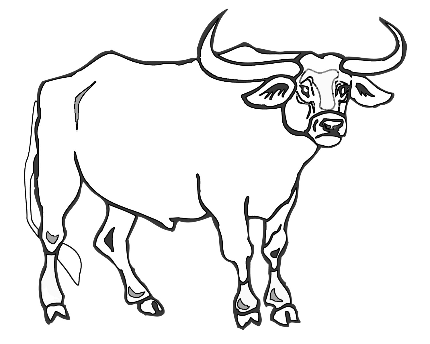 Ccg Colouring In Bull Bull Coloring Pages