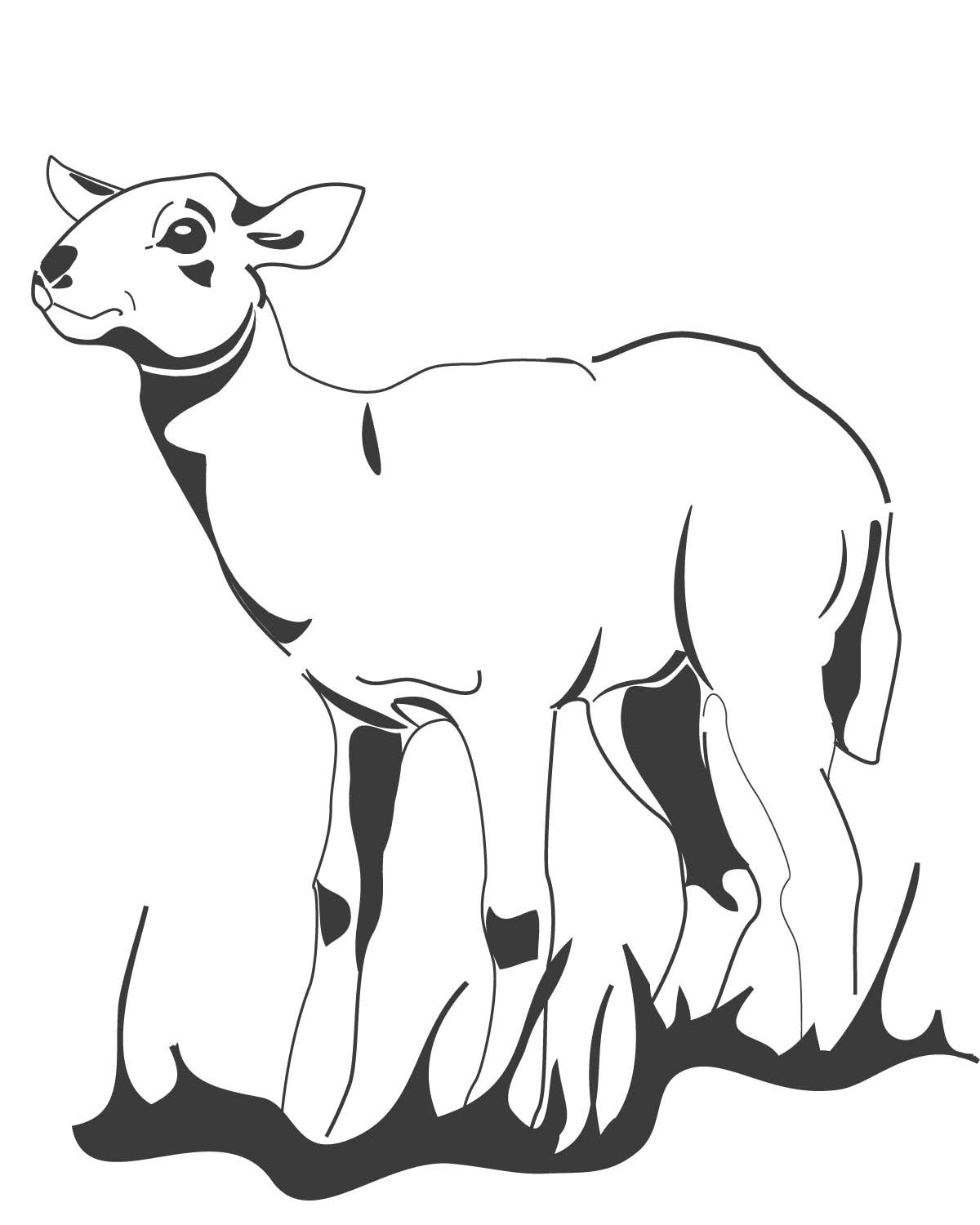 ccg colouring in lamb